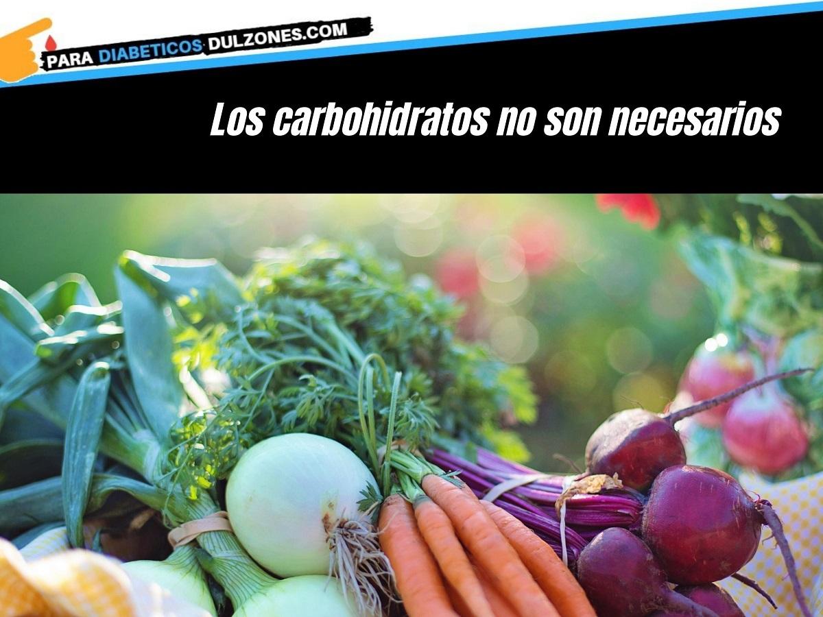 Los carbohidratos no son necesarios