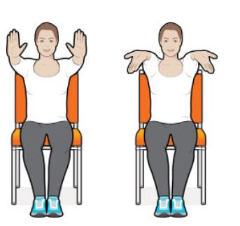 Ejercicios con sillas